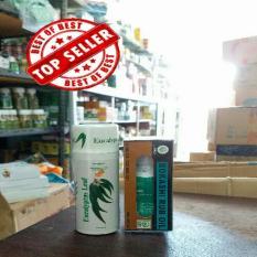 Harga Paket Minyak Oles Bokashi 65 Ml Hot Cream Eucaliptus Masage Cream Asli Herbal Keluarga