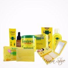 Paket Temulawak Original Holo Super - Paket Super Komplit ( Cream, Sabun, Toner, Serum dan Bedak )