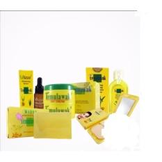 PaketCream Temulawak Original -  Cream Temulawak Asli ( Cream, Sabun, Toner, Serum dan Bedak ) Pemutih Wajah Alami