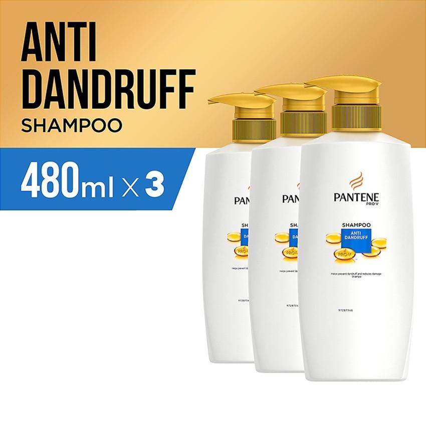 Pantene Shampoo Anti Dandruff 480ml - Paket isi 3