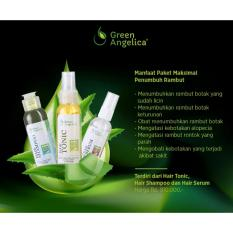 Jual Penumbuh Rambut Botak Green Angelica Paket Maximal Penyubur Rambut Cepat Beauty Hair Treatment Di Bawah Harga