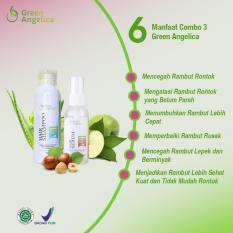 Perbandingan Harga Penumbuh Rambut Cegah Rambut Botak Shampo Serum Green Angelica Mengatasi Rambut Rontok Untuk Mencegah Kebotakan Rambut Alami 100 Original Di Jawa Timur
