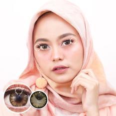 Pretty Doll Chimmer Brown Softlens - Minus 1.75 + Gratis Lenscase