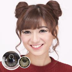 Pretty Doll Little Chimmer Brown Softlens - Minus 6.00 + Gratis Lenscase
