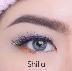 Harga Pretty Doll Shilla Grey Softlens Gratis Lenscase Asli Pretty Doll