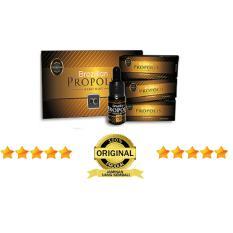 Promo Propolis Brazilian Moment Jaminan 100 Asli 1 Box 5 Botol Propolis Terbaru