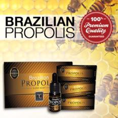 Spesifikasi Propolis Brazilian Moment Original 5 Botol Dan Harga