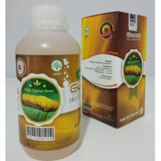 QNC Jelly Gamat Obat Herbal Mengobati Segala Jenis Penyakit- Herbal Bekasi