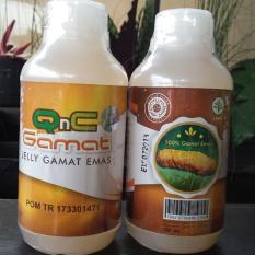 Harga Qnc Jelly Gamat Original 100 Teripang Emas Baru