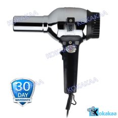 Rainbow Travel Hair Dryer Type 201 - Silver