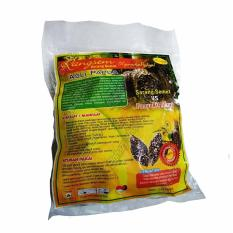 Teh sarang Semut Herbal Alami Asli PapuaIDR19500. Rp 20.000