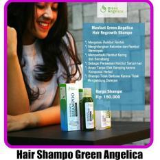 Beli Shampo Herbal Untuk Rambut Rontok Green Angelica Buah Nisim Alami Bpom Murah