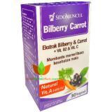 Toko Sido Muncul Bilberry Carrot Mengatasi Mata Lelah Bilberry Obat Mata Sido Muncul Online