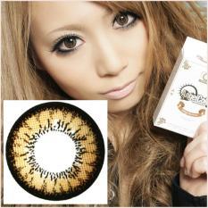 Softlens Angel Eyes / Soft Lens Angel Eyes - Brown + Free Lenscase - 1 Pcs