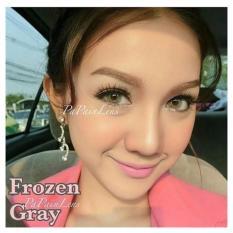 Spesifikasi Softlens Dreamcolor Frozen Grey Gratis Lens Case Yang Bagus Dan Murah