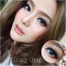 Promo Softlens Dreamcolor Lucky Grey Gratis Lens Case Akhir Tahun