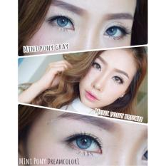 Beli Softlens Dreamcolor Mini Pony Grey Gratis Lens Case Cicilan