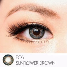 Softlens EOS Sunflower - Brown - Gratis Lens Case