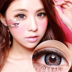 Harga Softlens Geo Princess Mimi Grey Gratis Lens Case New