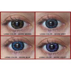 SOFTLENS LIVING COLOR TONE ADORE ANGEL LOVELY / SOFT LENS COLOUR - Violet