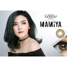 Diskon Softlens Mamiya Brown By Dreamcon Dreamcon