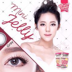 Softlens Mini Jelly Grey Gratis Lens Case Kitty Kawaii Murah Di Indonesia
