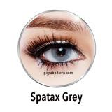 Promo Spatax Grey Softlens By Sweety Lens Minus 3 50 Gratis Lenscase Murah