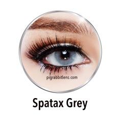 Spatax Grey Softlens By Sweety Lens Minus 4 50 Gratis Lenscase Diskon Indonesia