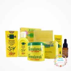Temulawak Cream Original Holo Super - Paket Temulawak Komplit ( Cream, Sabun, Toner dan