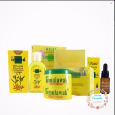 Harga Temulawak Cream Original Holo Super Paket Temulawak Komplit Cream Sabun Toner Dan Serum Paling Murah