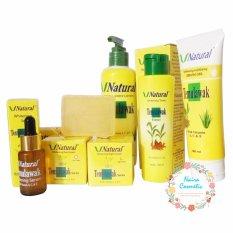 Temulawak Cream V Natural BPOM - V Natural Paket Komplit ( Cream Siang, Malam,