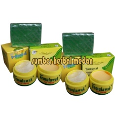 Diskon Temulawak Paket Cream Siang Malam Plus Sabun Sedayu Hijau Original 2Pcs North Sumatra