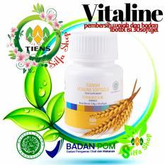 Harga Tiens Vitaline Herbal Alami 30 Softgels By Silfa Shop Murah