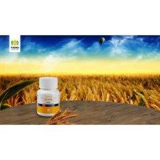 Review Tiens Vitaline Softgel Herbal Alami Jawa Timur