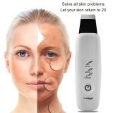Harga Ultrasonic Wajah Pembersih Pori Ultrasound Terapi Penggosok Kulit Galvanic Ion Spa Beauty Device F*C**L Massager Face Lift Mesin Intl Murah