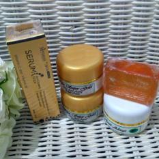 Beli Walet Cream Super Gold Paket Ekonomis 4In1 Serum Gold Hanasui 1Pc Secara Angsuran