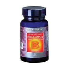 Promo Wellness Mega B Complex 30 S Vitamin B Kompleks B Komplek Vitamin Anti Stress Vitamain Saraf Syaraf Kesemutan Murah