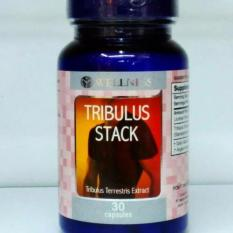 Jual Wellness Tribulus 30 Kapsul Branded Original