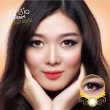 Jual X2 Bio Four Fusion Softlens Chocolate Mousse Gratis Lenscase Branded