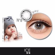 X2 Ice Nude N8 Softlens - Grey + Free Lenscase
