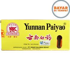 Yunnan Paiyao (Infeksi Luka Luar & Dalam- Tukak Lambung- Wasir)