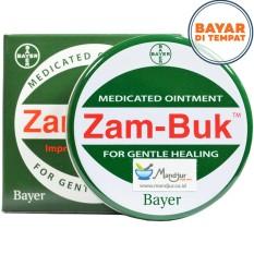 Zam-Buk (Medicated Ointment)