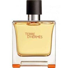 Toko Jual Hermes Terre D Hermes Man Eau De Parfum 75 Ml
