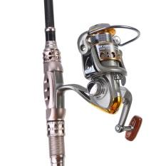 1 PC 13 Ball Bearing Spin Casting Fishing Reel untuk Air Asin dan Air Tawar (DC3000)-Intl