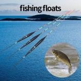 Review 3 Pcs Vertikal Pelampung Perikanan Kayu Mengambang Bobbers Set Tackle For Perahu Nelayan Laut Di Tiongkok