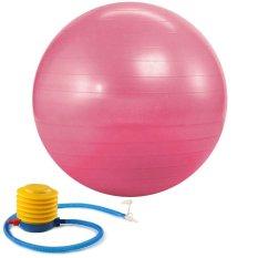 Bang Fitness 65 Cm Bola-Meningkatkan Keseimbangan Pada Bola Stabilitas Ini-Memperkuat Bola Latihan Inti-Sempurna Meja Kursi untuk Rumah atau Kantor Kerja-Bagus Bola Yoga dan untuk Pilates-Pump & Panduan Latihan Pink -Intl
