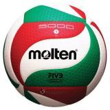 Harga Bola Volley Molten V5M5000 Paling Murah