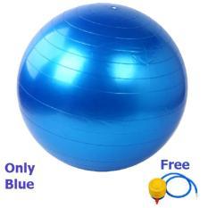 Harga Bola Yoga Fitness Gym Ball Sport Olah Raga Kesehatan Biru Gymball
