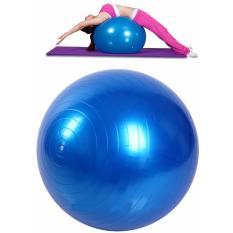 Jual Beli Bola Yoga Pilates Fitness Gym 45Cm Blue Indonesia