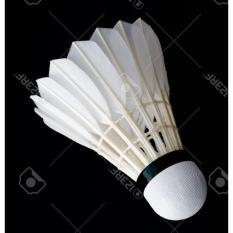 Ecer Kok Murah Standart Bwf Bulutangkis Badminton - 6De6a7